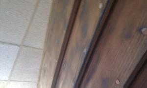 Planken nuten und mit Dichtungsmasse abdichten